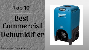 Best Commercial Dehumidifier of 2021 – Hot or Cold, Our Service is Gold.
